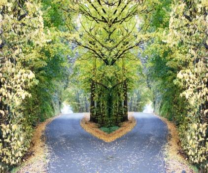 Mirrored River Road V small