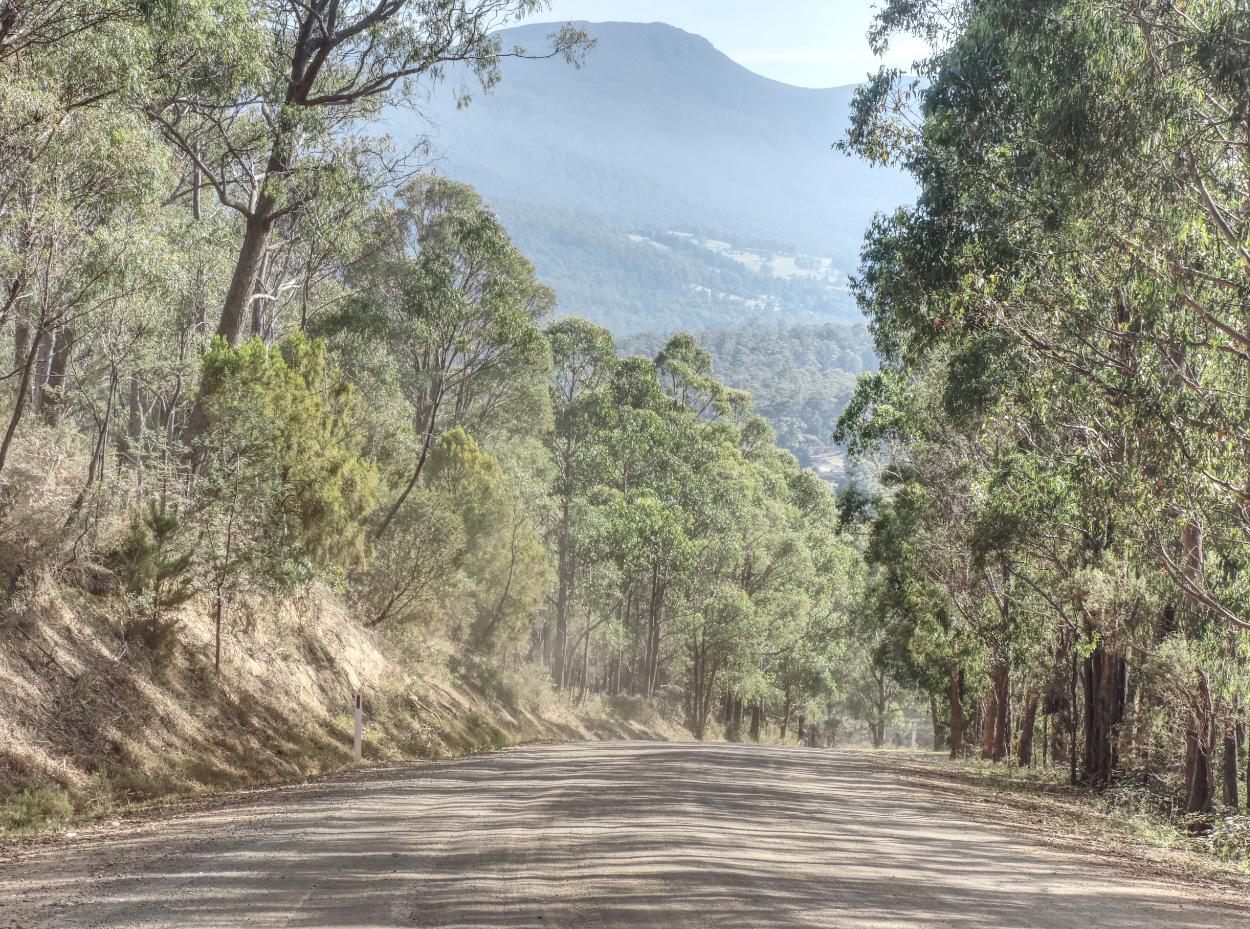Bullock Hill to the Huon 4 small