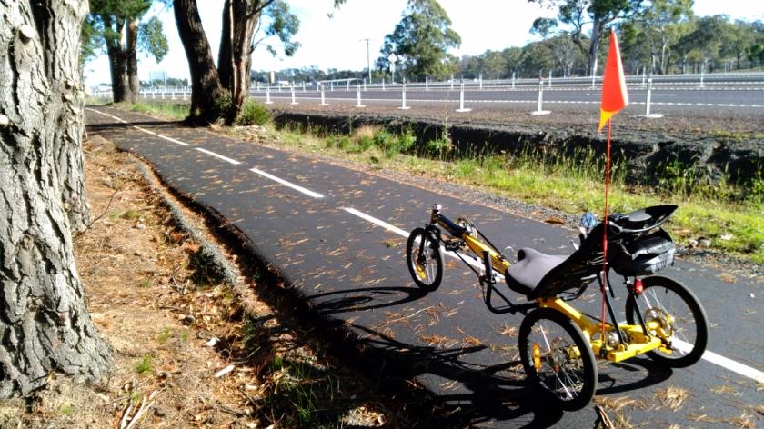Anura on cycle path