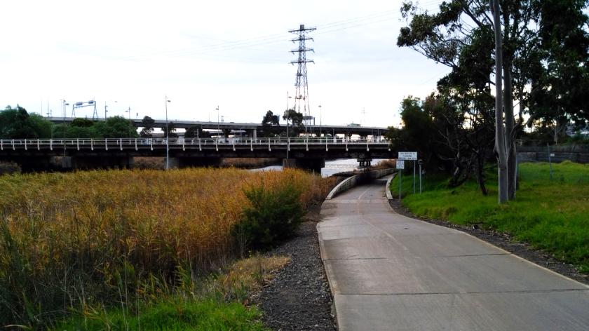 MT 7 Bike Track